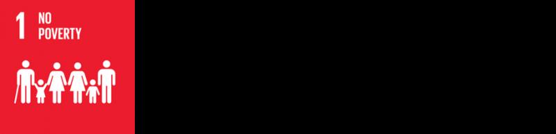 sdg 1_3